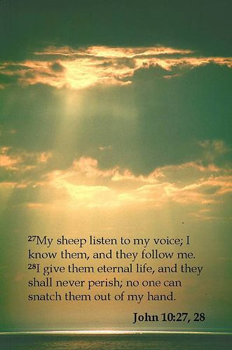 My sheep listen to my voice; I know them, and they follow me.  I give them eternal life, and they shall never perish; no one can snatch them out of my hand. John 10.27, 28 coolchaser.com