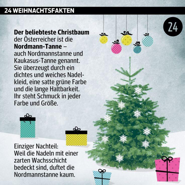 #Advent, Advent: #Türchen Nummer 24. ______________________ #Adventkalender #Weihnachten #WusstenSieDass #xmas #Daten #Grafik #kurier _______________________ http://kurier.at/weihnachten