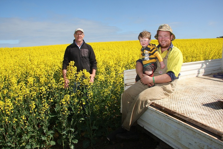 #Victorian #canola grower, Cameron Turner with Bayer's Ross Henley. Cameron was one of the first Aussie growers to trial IH50RR.