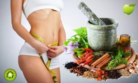 Натуральные слабительные средства для очищения кишечника. Травы, снижающие аппетит и подавляющие чувство голода.Как принимать семена льна для похудения