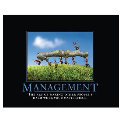 Management Poster Demotivation Pinterest Management