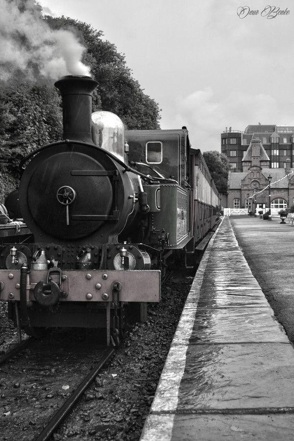 Steam Train by Onur Benke