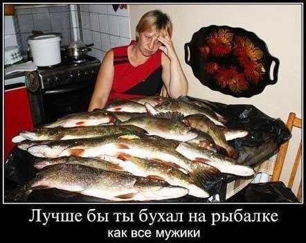 Рыбный бульон из костей, голов и других зачисток частиковой рыбы.