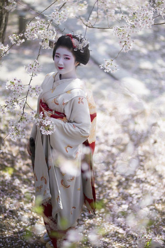 上七軒、舞妓 勝奈さんCAMERA EOS1DX / LENS SIGMA 85mm F1.4 DG HSM Art