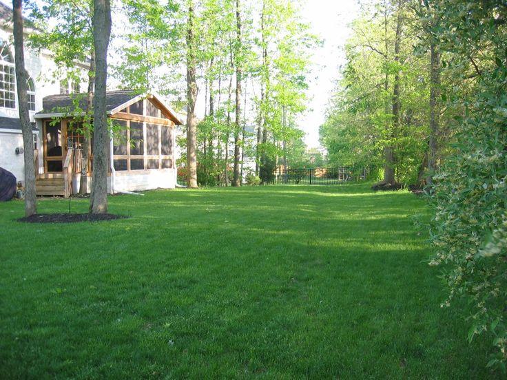Big open shady backyard my dream home pinterest for Open yard landscaping ideas