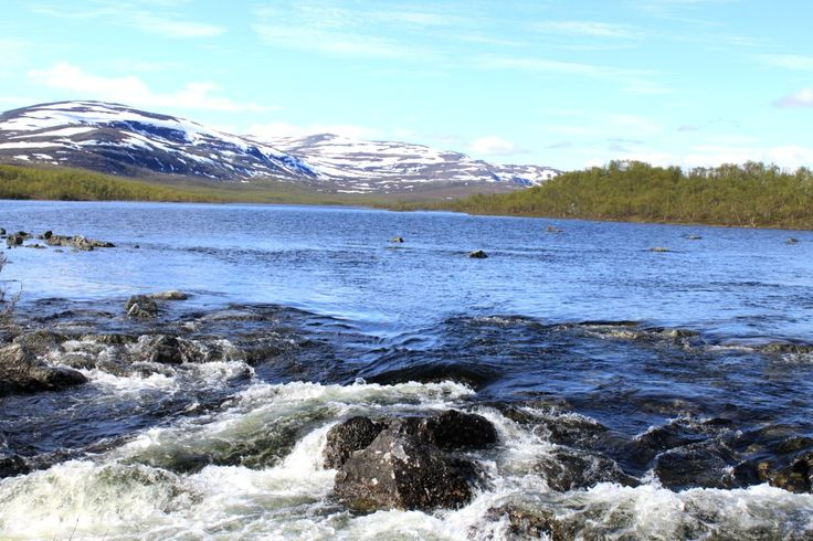 Malla Strict Nature Reserve close to Three Nations Cairn where Sweden; norway and Finland meet.