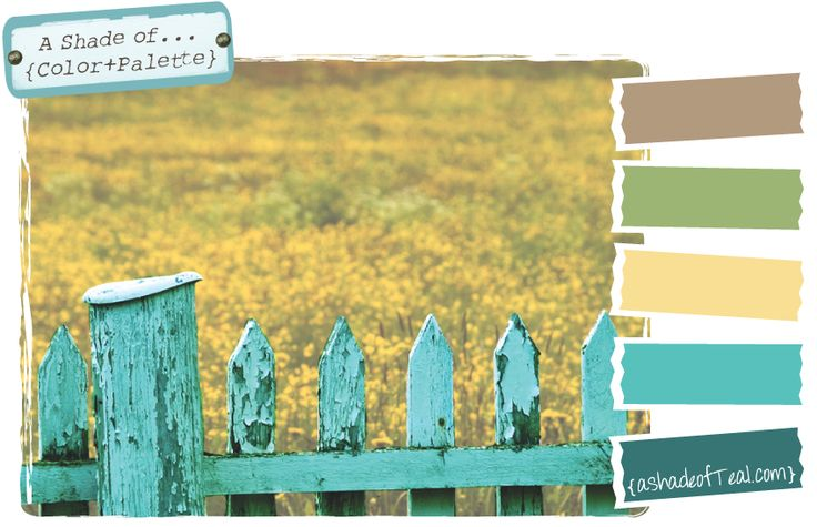 ClrPalette.4.RusticFence - a shade of teal color palette
