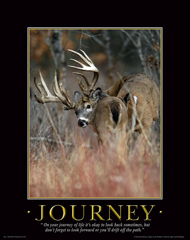 the life journey of buck Buck explores the life of buck brannaman from his childhood living with an abusive father to his successful and was off on a two year journey making her first.