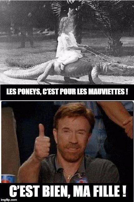 Humor & quotes   QUOTATION – Image :    As the quote says – Description  Voici les 15 meilleurs Chuck Norris Facts, les prouesses les plus balèzes attribuées à l'acteur de Walker, Texas Ranger    - #FunnyQuotes
