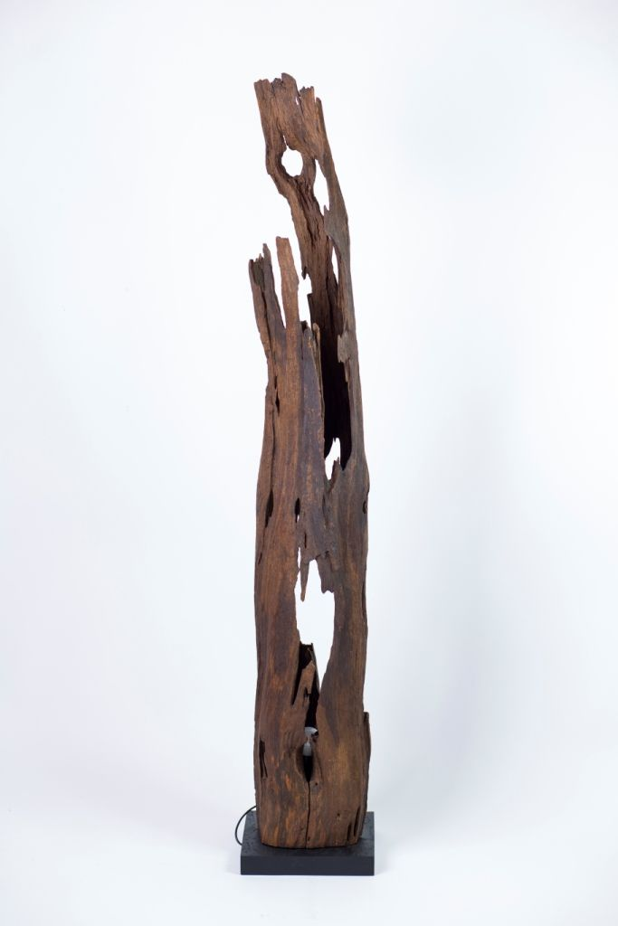How lucky I am to find this hollow branch! It gives me a perfect chance to make a floor lamp.