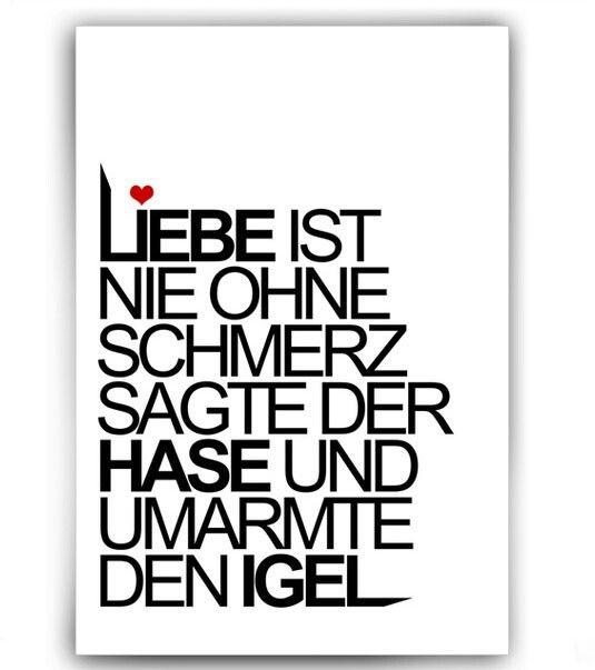 Love Sprüche Und Zitate | e1f1e99166444b14f4e46467e05cc664 the hedgehog true stories