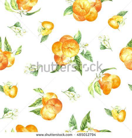 watercolor pattern orange fruit