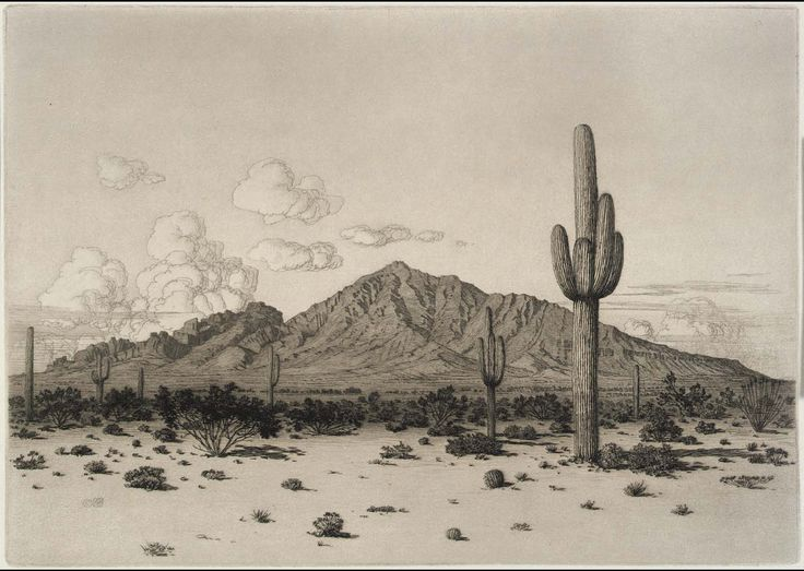 Camelback Mountain, Phoenix by George Elbert Burr (circa 1926) Smithsonian American Art Museum. George Elbert Burr was best known for his etchings and drypoints of the desert and mountain regions of the American West.