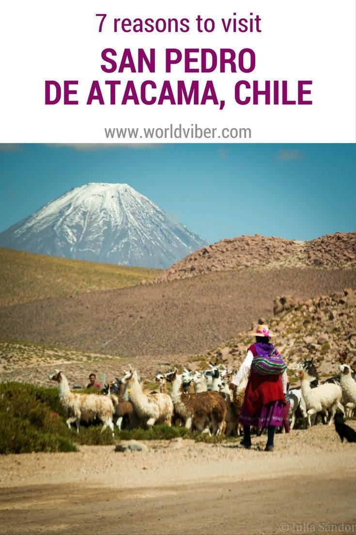 Reasons to visit San Pedro de Atacama Child
