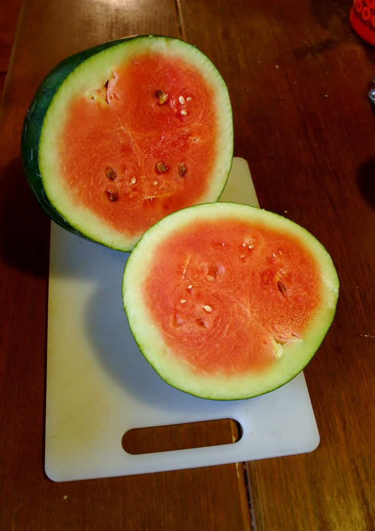 Delicious organic homegrown melon.