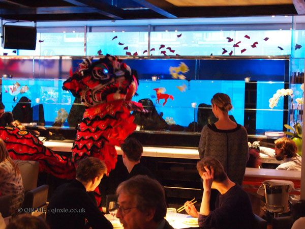 Yauatcha, Soho, Chinese New Year 2014 lunch | In pursuit of food...