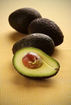 Grow an Avocado tree