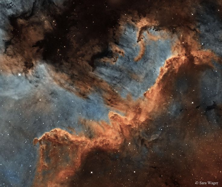 El Muro del Cisne, una nube de gas y polvo de 20 AL de tamaño, en cuyo interior nacen miles de estrellas... Resulta sobrecogedor...