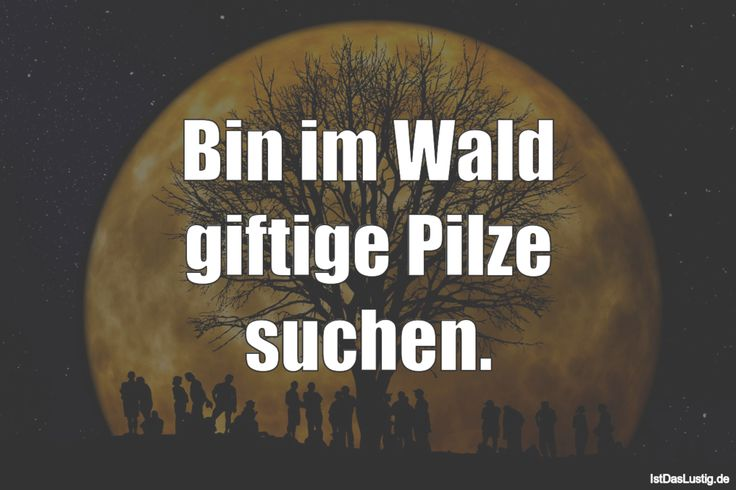 Bin im Wald giftige Pilze suchen. ... gefunden auf https://www.istdaslustig.de/spruch/3719 #lustig #sprüche #fun #spass