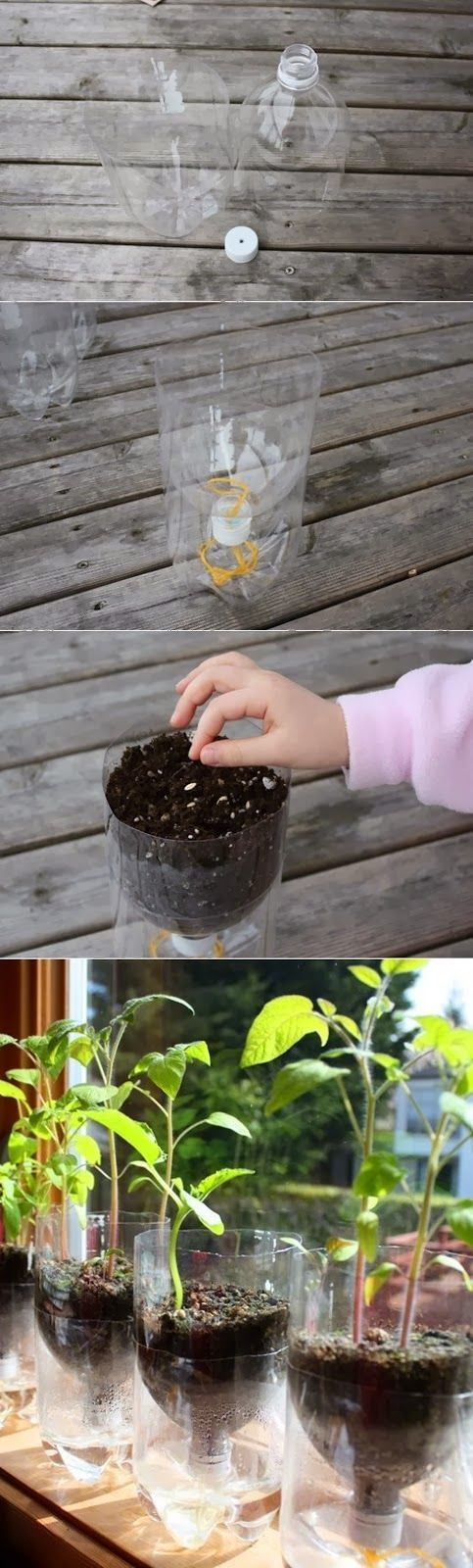 DIY : Self Watering Containers
