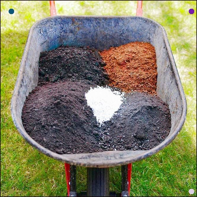 Fill Your Garden Bed With A Rich Light Soil Mix A General All