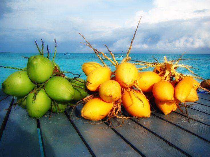 https://flic.kr/p/8VnHdo | Coconuts... Anyone? | Maldives Coconuts