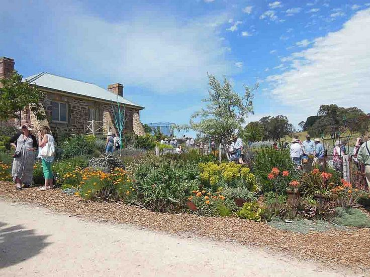 Garden Open Day at Sophie Thomson's at Mt Barker Springs South Australia Oct 2014.