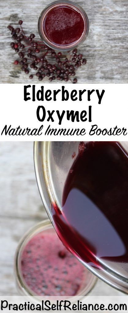 Immune Boosting Elderberry Oxymel - Practical Self Reliance
