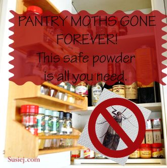 You open your pantry door, and you see a tiny flutter of something zigzagging its way, fluttering through the air. It's a moth – not the sweater-eating moth, it's definitely