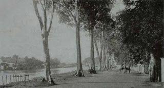 """""""Poeter Kayoon""""  Soerabaja (1923) Pasar bunga kayun seakarang"""