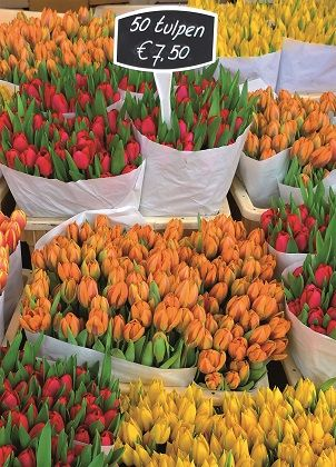 The Dutch Connection - Cardcetera.nl - Tulips on Market