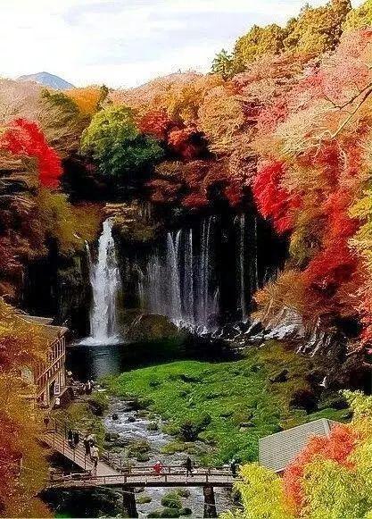 """ Shiraito Falls, Fujinomiya, Japan."" Shiraito Falls (白糸の滝 ) is a waterfall in Fujinomiya, Shizuoka Prefecture, near Mount Fuji, Japan. It is part of the Fuji-Hakone-Izu National Park and has been protected since 1936 as a Japanese Natural Monument."