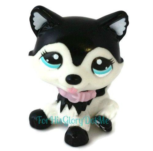 littlest pet shop husky - photo #46