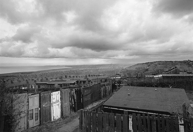 Allotments, Easington Colliery, County Durham 1983 © John Davies