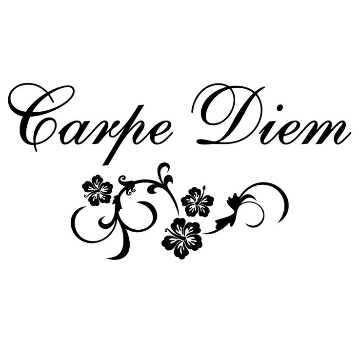 carpe diem - Google zoeken