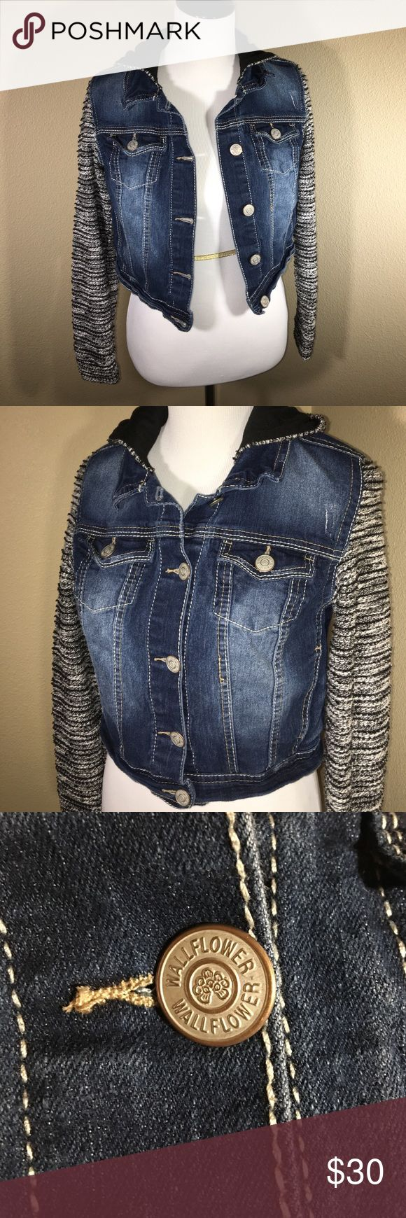 🆕 Hooded Jean Jacket Adorable Hooded Jean Jacket by Wallflower. Sweater like sleeves, and hood. Button down. 2 hand pockets, and 2 button breast pockets. EUC. Offers welcome. 20% off bundles. Wallflower Jackets & Coats Jean Jackets