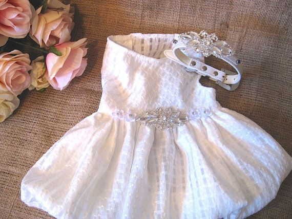 Wedding dog dress | flower girl dog dress |The Beliza |matching collar and leash option | XS S M L