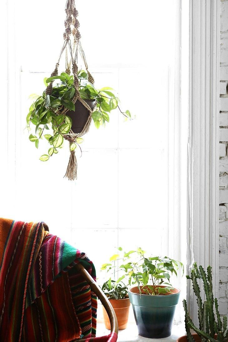 Hanging Plant Holders Indoor Top Full Size Of Plant
