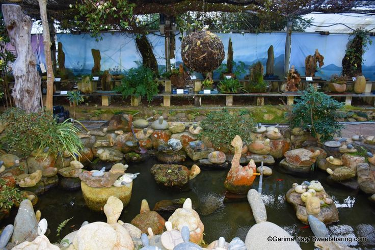 Geoje Natural Art Land: Beautiful Stone and Wood Sculptures