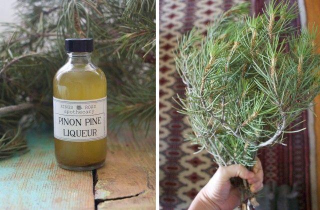 Conifer Liqueur Recipe