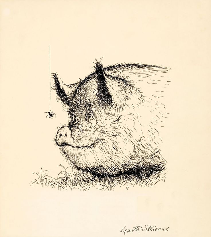 'May I have your name?' (page 135) in Charlotte's Web, 1952 by Garth Williams + EB White