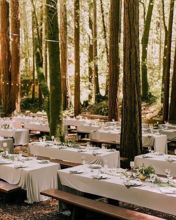 Enchanted Forest Wedding Diy Wedding Ideas Rustic Wedding