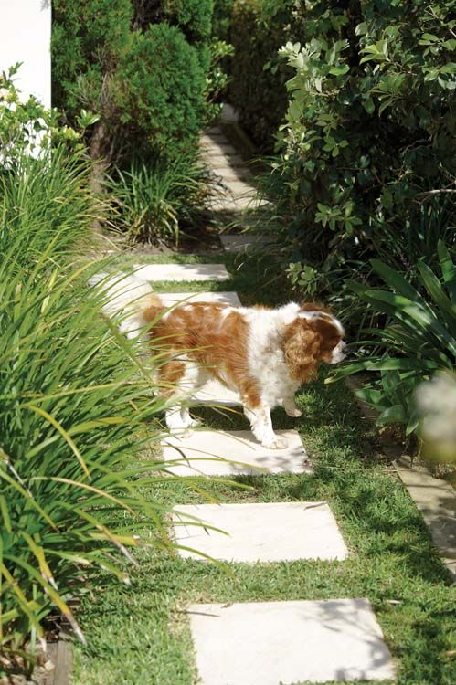 On the garden path.