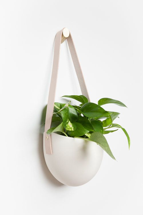 Large Flat Back Ceramic Planter Illuminate The Room With Greenery Smooth Curves That Echo Perfection Of River Polished Stone
