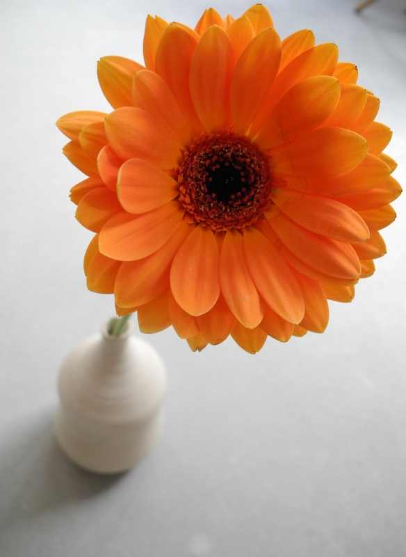 One or two gerberas in a vase are all you need for a bright centerpiece.  Gerbera - orange bright and shine!!  In a small bud vase...