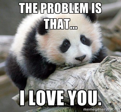 THE PROBLEM IS THAT... I LOVE YOU. - sad panda | Meme Generator