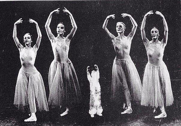 Кошка великого балетмейстера Джорджа Баланчина Мурка вместе с танцовщицами участвует в репетиции балета «Серенада» в 1970-х годах. Для Баланчина она была не просто кошка, это была его самая известная воспитанница, которую выдающийся хореограф сумел обучить выполнять entre-chats, pas de chats и даже grand jete.