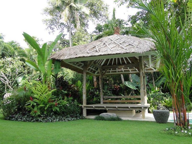landscape tropical