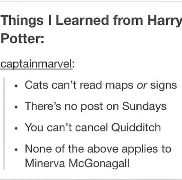Harry Potter lessons