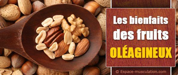 Nutrition sportive : bienfaits des fruits oléagineux